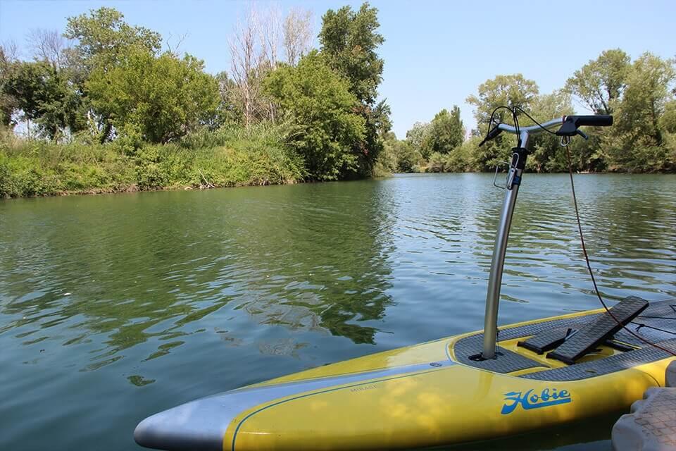 http://www.kayak-paddle-frejus.fr/wp-content/uploads/2017/06/paddle-stepper-saint-aygulf.jpg